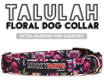 Dog Collar - Talulah Floral - Various Sizes & Matching Products Available!