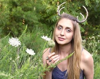 Faun/Fawn Antlers