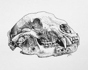 Bear skull | Etsy