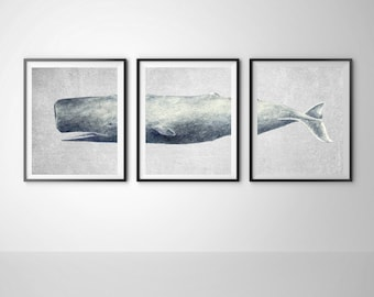 Whale print, Whale art, Modern whale decor, Whale large poster, Whale nursery decor, Housewarming gift, Set of 3 print, Instant download