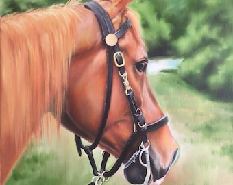 "Horse art, equine art, horse painting, wall art, Original oil painting ""Serenity"" 11x14"" on gallery wrapped canvas."