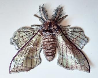 Moks518 Gray Hawk Moth, Poplar Hawk Embroidered Patch