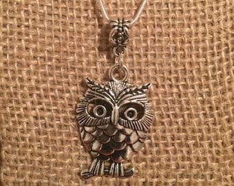 Silver Big Eye Owl