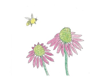 Cone Flowers and Bee