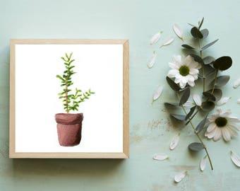 Miniature Plant Print Art, Tiny Art Prints, Dorm Wall Art, Botanical Prints, Small Art, Small Paintings, Plant Art, Dorm Decor