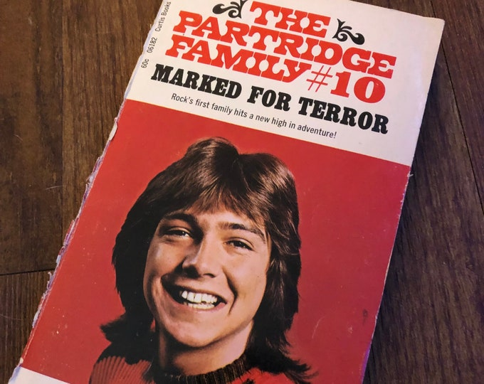 Vintage Paperback The Partridge Family David Cassidy 1976 Shirley Jones Teen Idol Teen Beat Pop Music Seventies The Brady Bunch The Osmonds