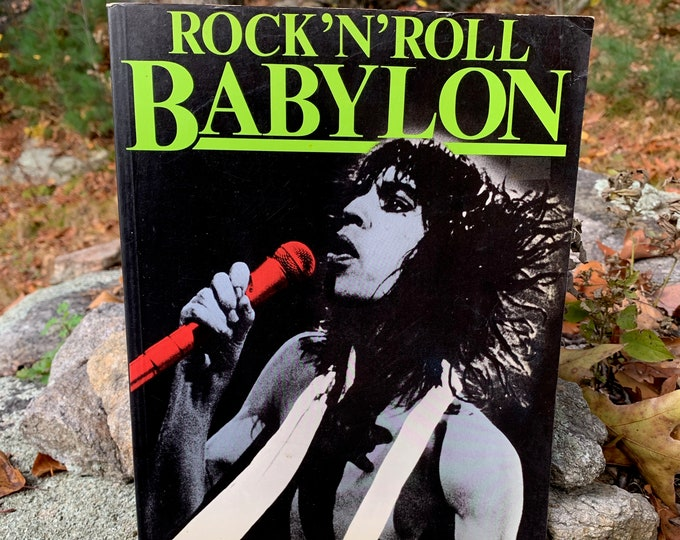 Vintage Rock N Roll Babylon Softcover Book 1982 By Gary Herman Mick Jagger The Who Jimi Hendrix Janis Joplin The Rolling Stones Sex Groupies