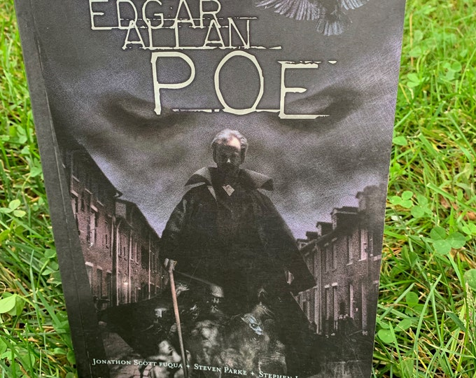 In The Shadow of Edgar Allan Poe Graphic Novel 2002 Softcover Book Gothic Goth The Raven Poet Writer Novel Horror Telltale Heart Comic Books