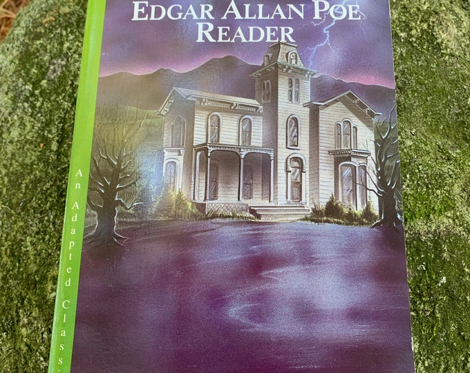 Vintage 1992 The Edgar Allan Poe Reader Book The Raven Poet Vincent Price Telltale Heart Goth The Black Cat The Fall Of The House of Usher