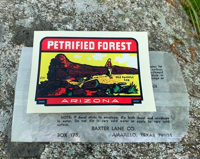 Vintage 1950s Arizona Petrified Forest Baxter Lane Co Sticker/Decal - Flagstaff Phoenix Yuma Travel Explore Souvenir