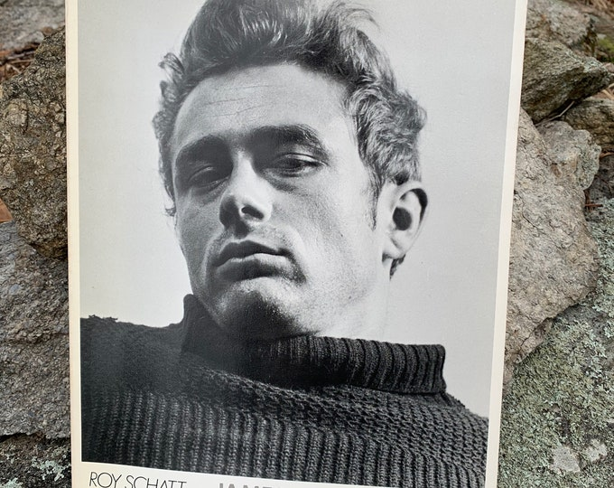 Vintage 82 James Dean Softcover Book Rebel Without A Cause Photography Camera Portrait Motorcycle Hot Rod Porsche Spyder Buddy Holly Oldies
