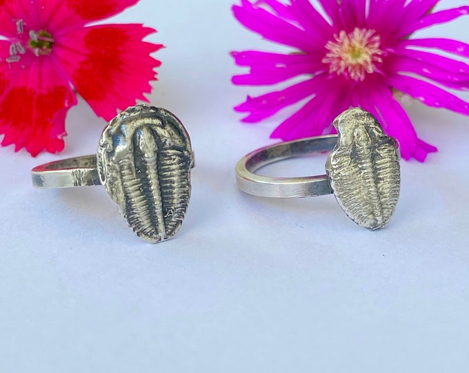 Trilobite Sterling Silver Ring // FOSSIL Lovers // Fossil Jewelry// Trilobite