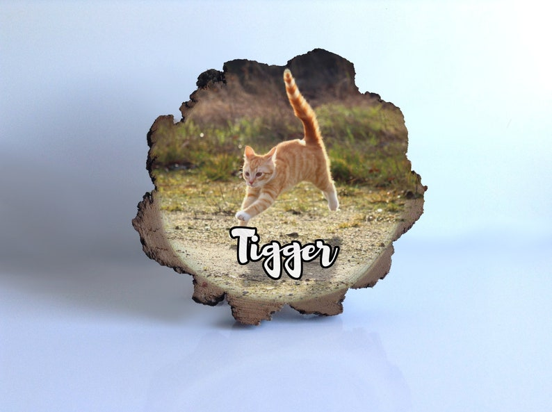 Cat Themed Gifts Presents For Lovers Custom