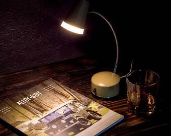 Mid-Century Metal Gooseneck Desk Lamp