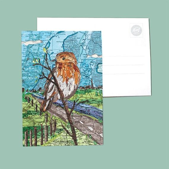 World map postcard - Dutch birds