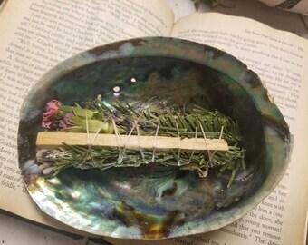 ABALONE SHELL, smudge stick burner seashell, incense burner, water, ocean, sage, smudge stick,  ceremony, ritual, loose incense