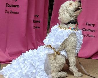Dive Dog Dress - White