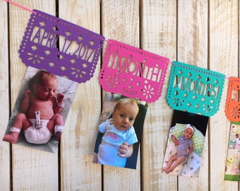 Papel Picado First Year Monthly Photo Banner | First Fiesta Decorations | First Birthday Banner
