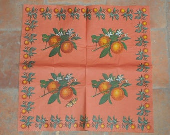 "paper towel theme fruits and vegetables ""oranges"""