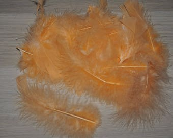 bag of 30 feathers about apricot color
