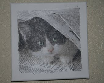 """small painting, square, """"cat under the newspaper"""""""