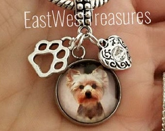20 Pewter Yorkshire Terrier Charms 5491