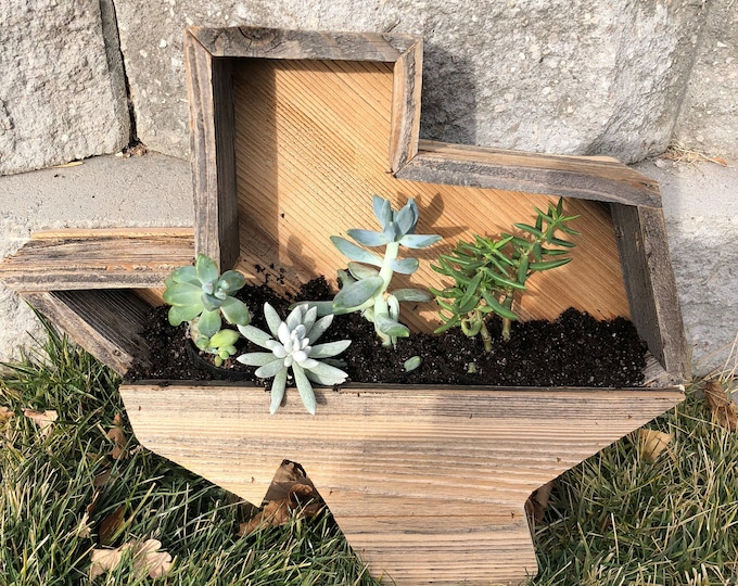 Texas Pocket Planter