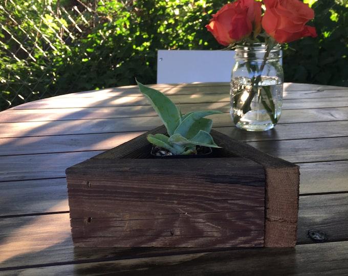 """7"""" Tringle Succulent Planter Box"""