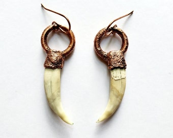 Cat Canine Teeth and Copper Earrings  // Copper Ear Wires // Humanely Sourced, Cruelty Free