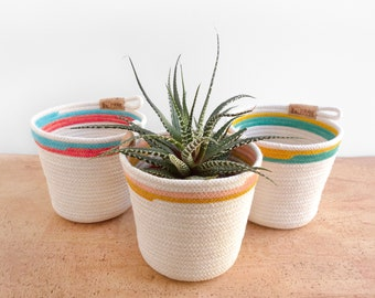 Planter made of rope, clothesline pot for plant. Cotton clothesline basket. Indoor plant pot. Colorful painted stripes, cachepot.