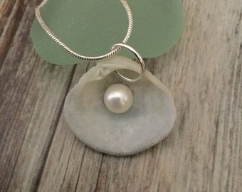 Seashell with Pearl Necklace