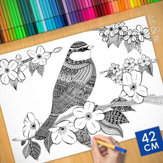 Coloring poster - BIRD ON...