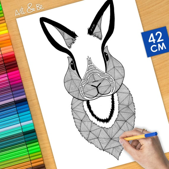 COLORING Poster -  RABBIT...