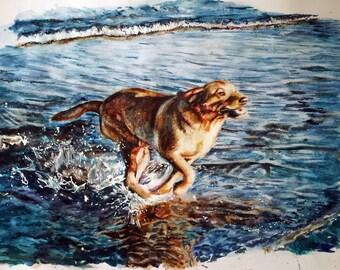 Custom Watercolour Portrait. Pet Portrait Painting.