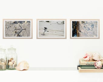 "Art Print Set- ""The Footprint Collection""- 3 Fine Art print combo- Gallery Wall- Wildlife Art- Housewarming- Home- Nature photography"