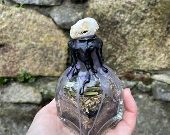 Clairvoyance & Psychic Awareness Altar Jar | Spell or Ritual Jar | Apothecary of Sorrows