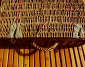 Rattan trunk with old fabric - Made in France -