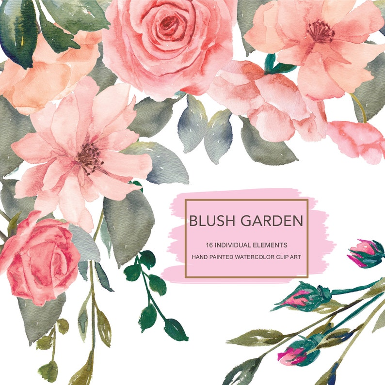 Blush Flower Clipart Watercolor Wild Rose Clipart Separate Elements Hand  Painted Pink Wedding Flowers | Blush Garden
