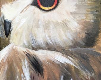 Owl Eye acrylic painting