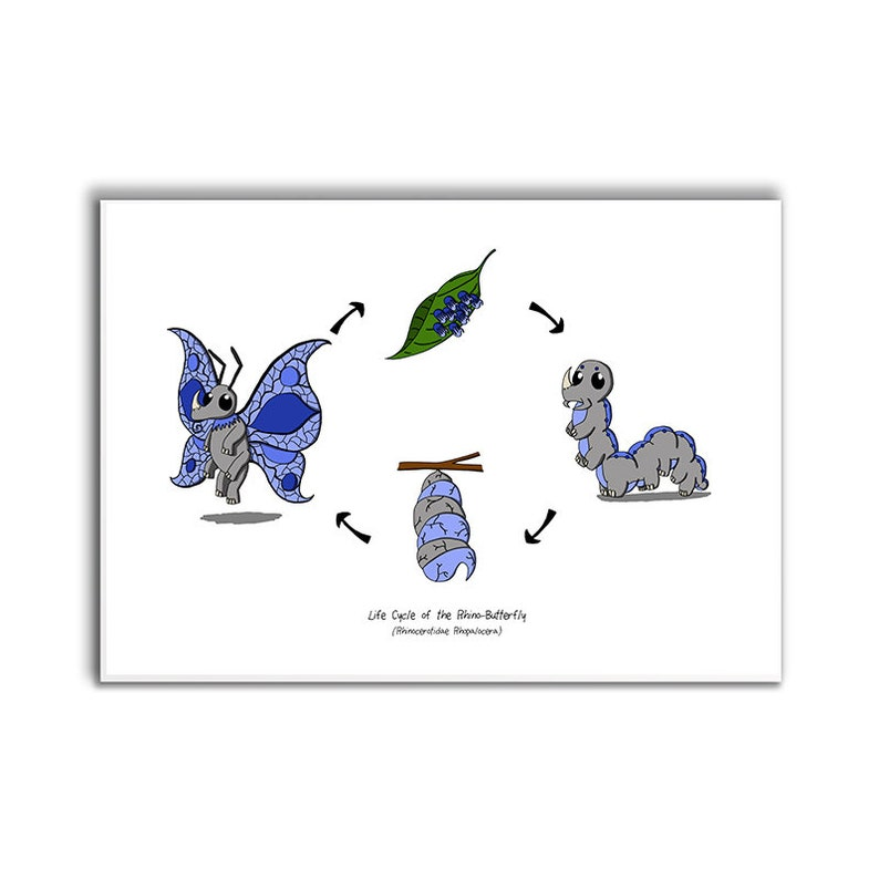 Hybrid Life Cycles - Limited Edition Prints