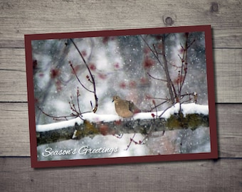 Season's Greetings Dove Holiday Postcard