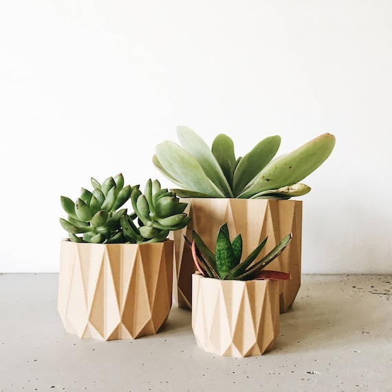 cache pot bois g om trique cactus et succulente origami etsy. Black Bedroom Furniture Sets. Home Design Ideas