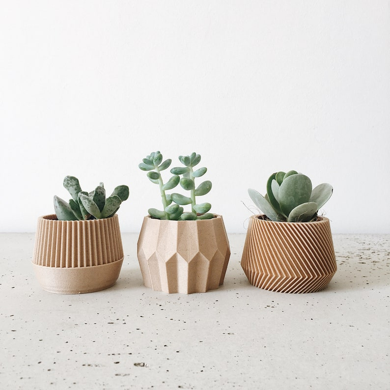 Set of 3 small succulent plant pots  original planter gift  image 0