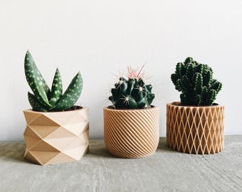 Set of 3 small indoor plant pot perfect for succulent and cactus! Original planter gift.