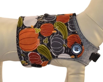 Autumn Pumpkins & Gourds Dog Harness Vest * Fall Leaves, White Pumpkins * Interchangeable Reversible Pet Dog Cover for PAWZLY Harnesses
