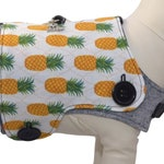 Tropical Paradise w/ Pineapples Interchangeable Reversible Pet Dog Cover for PAWZLY Harnesses