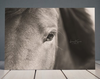 Sepia Abstract Horse Print | Equine Fine Art Print | Horse Wall Decor | Equine Art | Horse photography | Home decor | Nursery Art