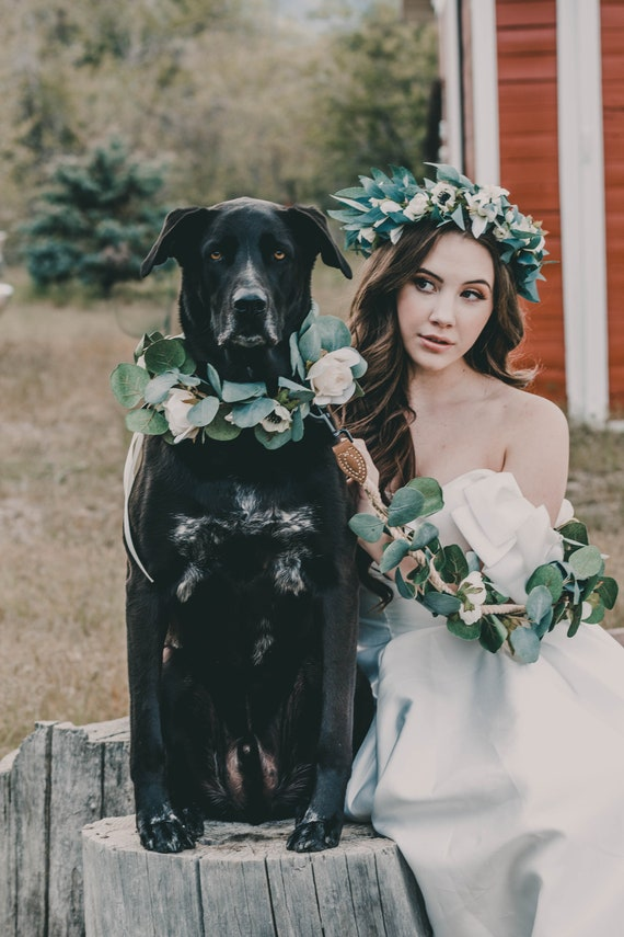 Photo Prop Removable Dog Collar Flower Polka Dot Shabby Chic Dog Collar Flower Fabric Flower Wedding Dog Collar Flower