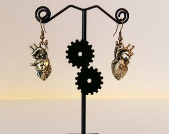 Heart Anatomy Earrings Bronze