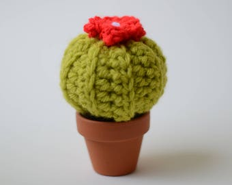 Small Crocheted Cactus